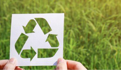livraison ecologique
