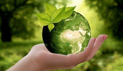 entreprise de livraison éco-responsable